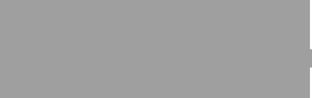 Cmn gray logo